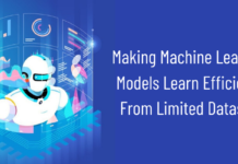 machine learning development services
